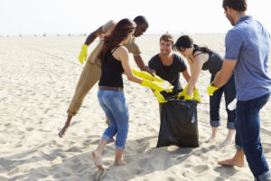 California state park beach clean up