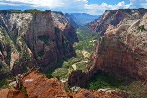 zion national park campsites