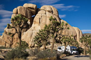joshua tree national park campsites